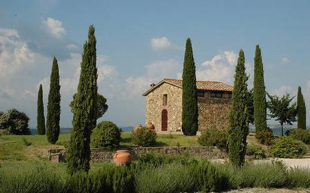 Brunello di Montalcino Wine Tour by Minivan