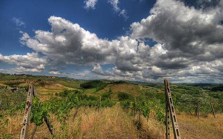 Chianti and Castle Tour by Minivan