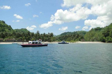 Diving for Certified Diver in Nusa Penida - Crystal Bay (From Bali)
