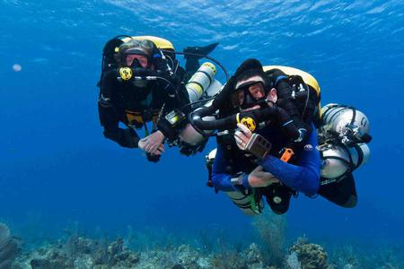 Diving for Certified Divers in Tulamben