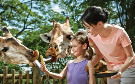 Singapore Zoo 1-Day Admission Ticket and Tram Ride