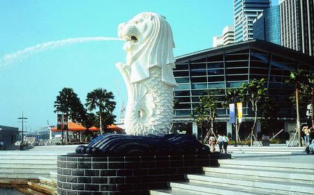 Half-Day Singapore City Tour