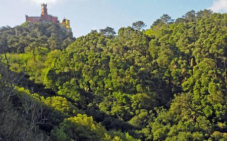 Sintra: Half Day Trekking Tour