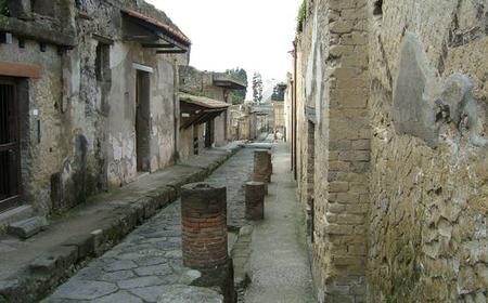 From Sorrento: Herculaneum Half-Day Private Tour