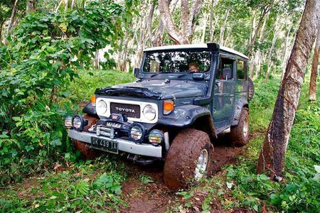 Jungle Jeep Adventure Tour