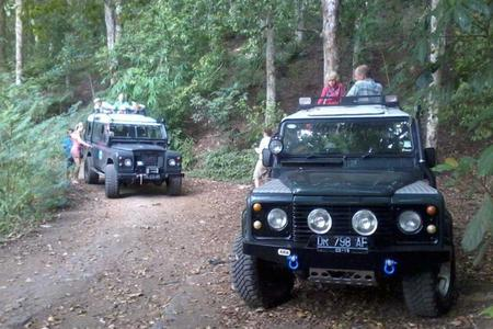Jeep Expedition at West Bali National Park