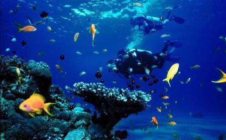 Diving Tour El Gouna