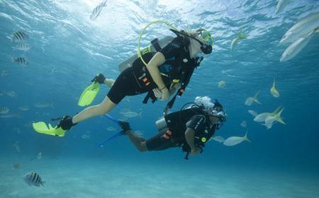 Gran Canaria: Beginner Scuba Diving Experience