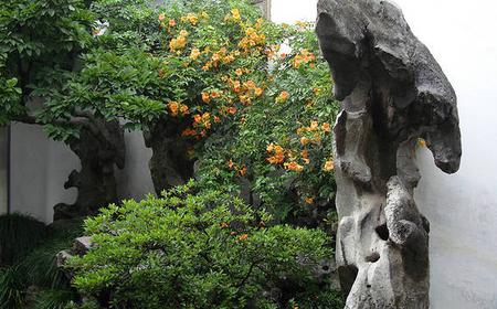 Gardens of Oriental Venice Day Tour in Suzhou, China