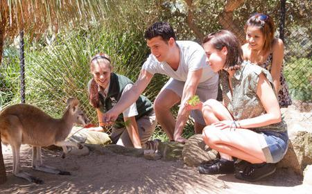 From Taronga Zoo: 'Nura Diya' Aboriginal 90-Min Discovery