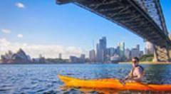 Under Sydney Harbour Bridge Morning Kayak