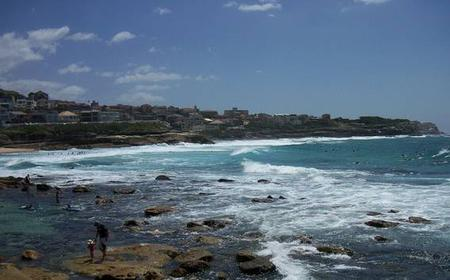 Sydney: 6-Hour Highlights and Bondi to Bronte Cliff-Top Walk