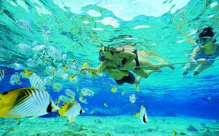 Tiran Island Full-Day Boat Tour & Snorkeling in the Red Sea