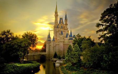 Disneyland/Disneysea 1-Day Ticket and Private Transfer