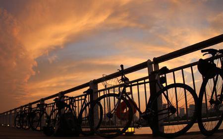 Tokyo Night Bike Tour Rainbow Bridge and Odaiba