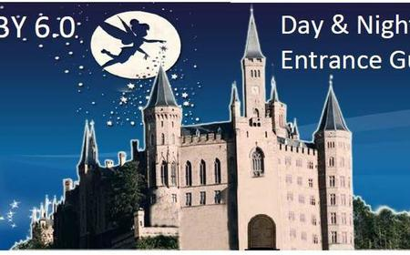 Tokyo Disneyland or DisneySea Entry Ticket & Transfer
