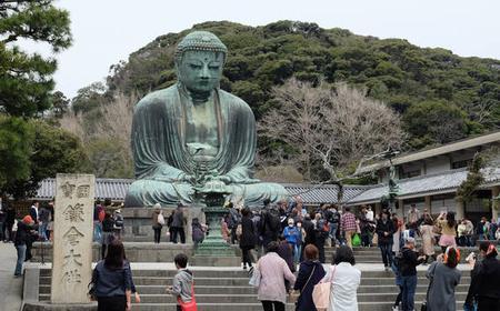 From Tokyo: Day Trip to Shonan Seaside