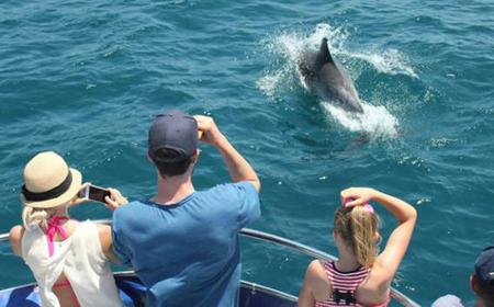 Day trip to Gibraltar and a Dolphin Safari