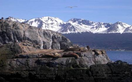 Beagle Channel Yacht Sailing Excursion from Ushuaia