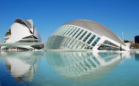 Valencia City Tour by Bus with Tapas and Flamenco Show