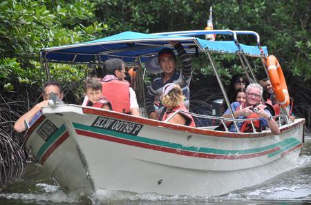 Half-Day Mangrove Safari Boat Tour in Langkawi