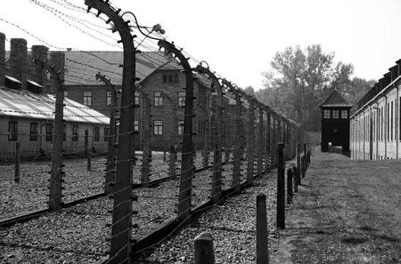 Auschwitz Tour with Private Transfer