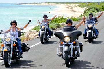 Cozumel Sightseeing Tour Aboard a Harley-Davidson