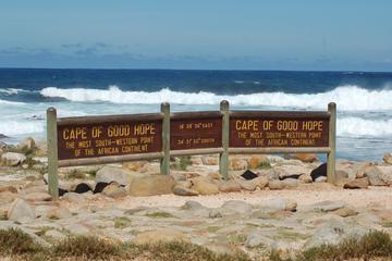 Cape Town Shore Excursion: Cape Peninsula Tour