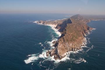 Cape Town Shore Excursion: Cape Point Tour