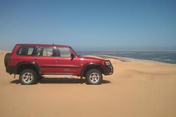 Namib Desert 4x4 Tour from Swakopmund