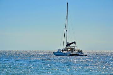 Dolphin and Seal Catamaran Cruise from Walvis Bay