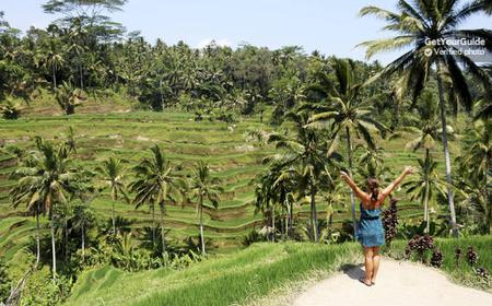 Ubud Full-Day Private Tour