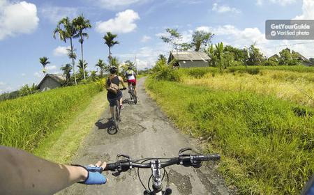 Ubud to Tegalalang Electric Bike Tour