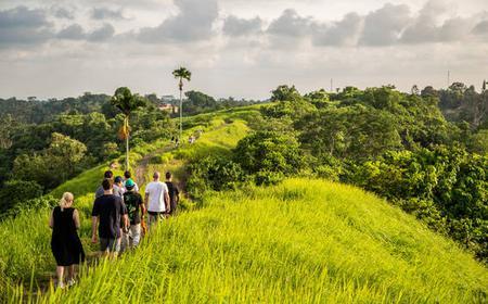 Bali: Ubud Rice Terraces Full-Day Walking Tour