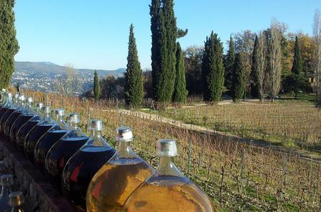 Private Trip to St Jeanet and St Paul de Vence with Wine Tasting from Monaco