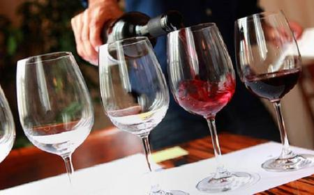 Amarone Wine Tasting Experience in Verona