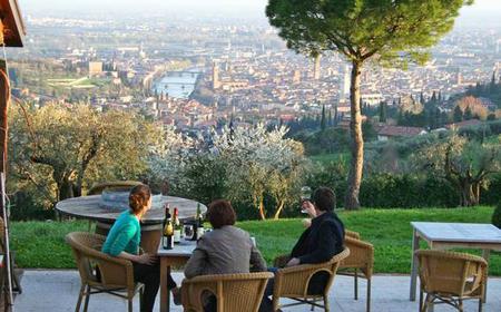 Wine Tasting on Verona's Hills