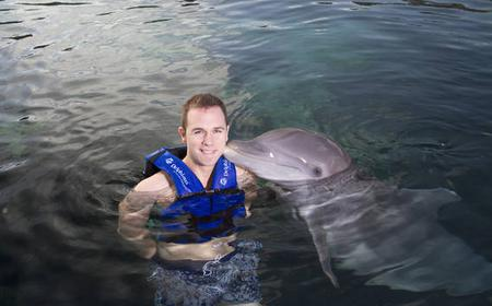 From Cancún: Swim with Dolphins at Xel-Ha Park