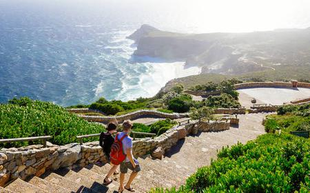 Cape Point Explorer Full-Day Excursion