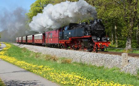 Doberan and Kuehlungsborn: Molli Train and Minster Tour