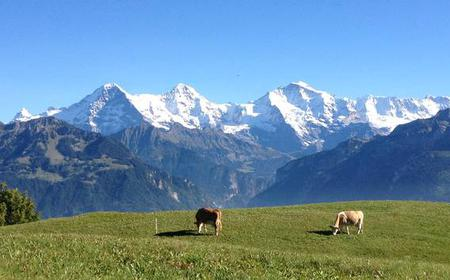 From Zurich: Customized Private Swiss Day Tour
