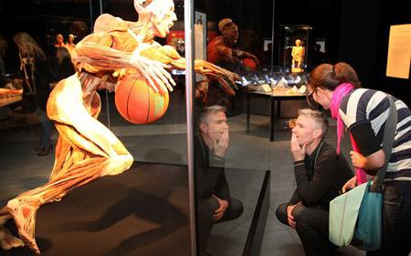 Saver Combo: Amsterdam Hop-On Hop-Off with Body Worlds