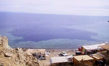 Dahab: Blue Hole Full-Day Snorkel Tour