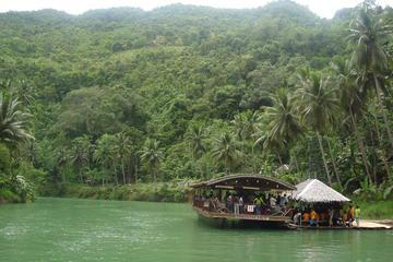 Private Bohol Day Tour with Loboc River Cruise and Lunch