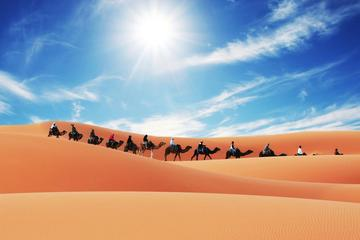 Merzouga Camel Trek for an Overnight in desert