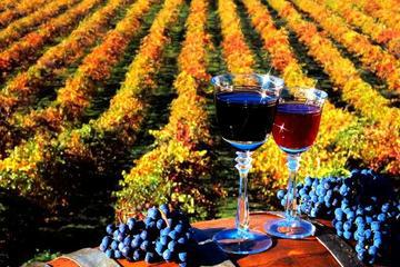 4-Day Wine Tour in Moldova from Chisinau
