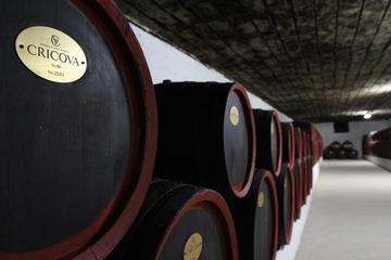 3 Excursions in One Day Cricova Winery, Curchi Monastery and Old Orhei from Chisinau