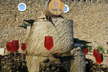 2  Excursions in One Day Milestii Mici Winery and Tiraspol Transnistria