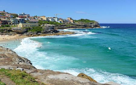 Sydney and Bondi Beach Morning Tour with Optional Opera House