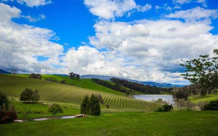Yarra Valley Wine Tour from Melbourne